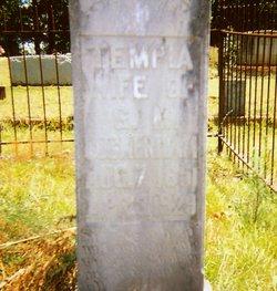 Tempia <i>Smith</i> Cockerham