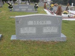 Joel Lee Joe Brown