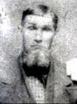 William David