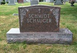 Nicholas N Schauger