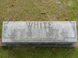 Sarah Frances <i>Ambrose</i> White