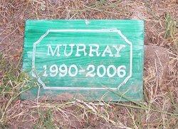 Hampton's Highland Murray Smith