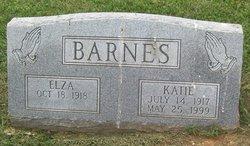 Katie E Barnes