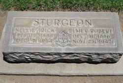 Elmer Robert Sturgeon