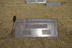 Ernest H Anderson, Sr