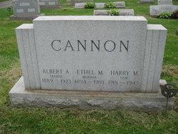 Lieut Harry Michael Cannon