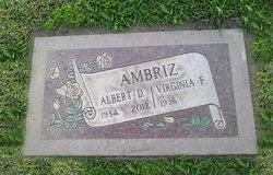 Albert Delayo Ambriz