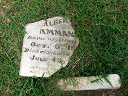 Albert Joseph Ammann