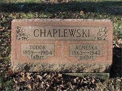 Agneska <i>Novack</i> Chapleski