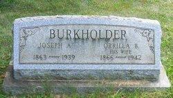 Orrilla <i>Barr</i> Burkholder