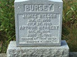 Arthur Herbert Bursey