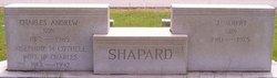 John Albert Shapard