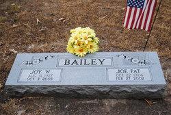 Joy B <i>Webb</i> Bailey