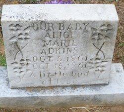 Alice Marie Adkins
