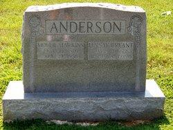 Mollie <i>Hawkins</i> Anderson