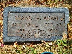 Diane A Adam