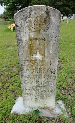 Jesse E Anderson