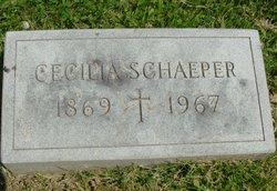 Cecilia Schaeper
