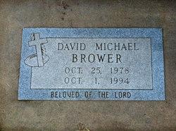 David Michael Brower