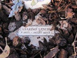 Catarino Sanchez