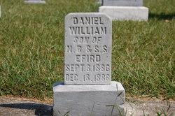 Daniel Wiliam Efird