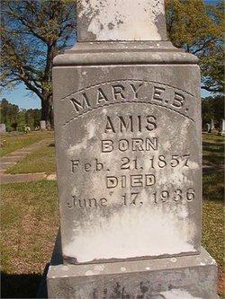 Mary Elizabeth Mollie <i>Barnett</i> Amis