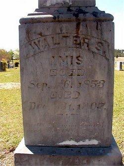 Walter Stewart Amis