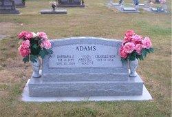 Barbara Jean <i>Toncray</i> Adams