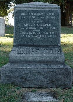 Amelia A <i>Mapes</i> Carpenter