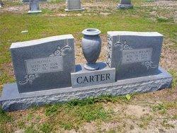 Rhodicy <i>Wilkins</i> Carter