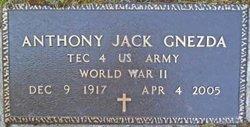 Anthony Jack Tony Gnezda