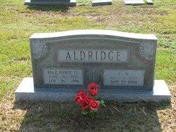 James Wilson Aldridge