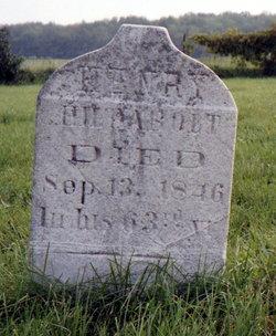 Heinrich Henry Hildabolt