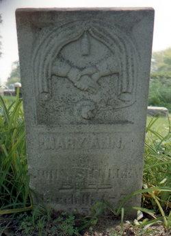 Mary Ann <i>Bierman</i> Shelley