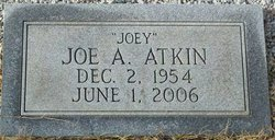 Joe Anthony Atkin