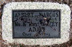Albert Marcus Adair