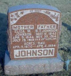 Benjamin Thompson Johnson
