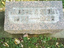 George Franklin Stout