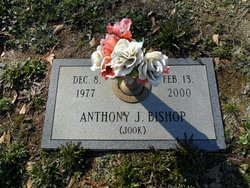 Anthony J Bishop