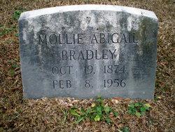 Mollie Abigail <i>Love</i> Bradley