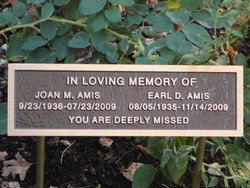 Earl D Amis