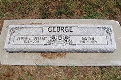 David H. George