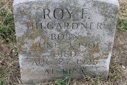 Roy F Hilgardner