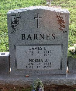 Norma J Barnes
