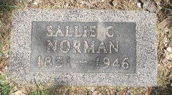 Sarah Catherine Sallie <i>Barnett</i> Norman