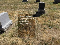 Beda Hammer