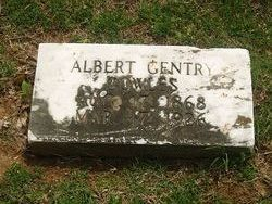 Albert Gentry Cowles