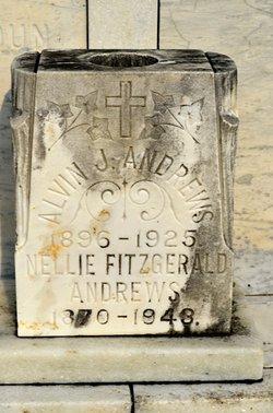 Alvin J Andrews