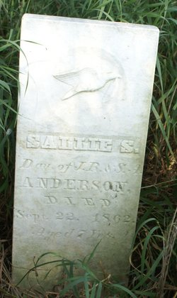 Sallie S. Anderson