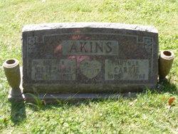Carrie Akins